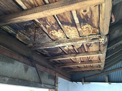 広縁の屋根には雨漏りが 古民家
